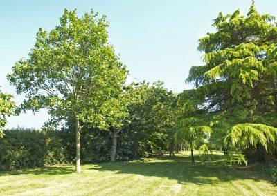 Leontine-jardin-2